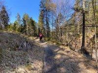 Altlacher Hochkopf Trail: Bild #59