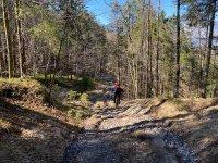 Altlacher Hochkopf Trail: Bild #61