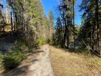 Altlacher Hochkopf Trail: Bild #62