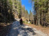 Altlacher Hochkopf Trail: Bild #63