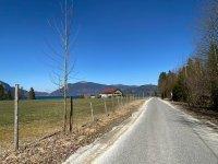 Altlacher Hochkopf Trail: Bild #64