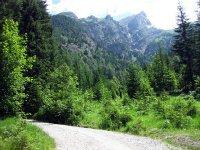 Plumsjochhütte: Bild #4