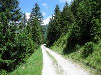 Plumsjochhütte: Bild #5
