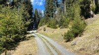 Plamortboden Trailrunde: Bild #17