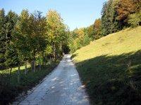 Brauneck: Bild #8