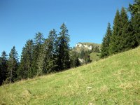 Brauneck: Bild #13