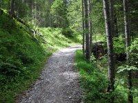 Falkenhütte: Bild #6