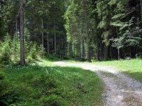 Falkenhütte: Bild #7