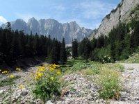 Falkenhütte: Bild #27
