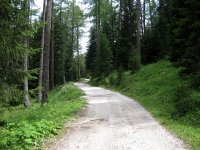 Weißhorn: Bild #7