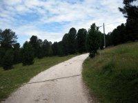 Weißhorn: Bild #15