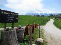 Priener Hütte: Bild #44