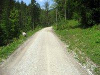 Buchsteinhütte: Bild #3