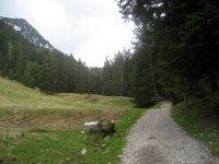 Buchsteinhütte: Bild #13