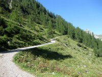 Lamsenjochhütte: Bild #17