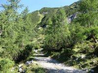 Lamsenjochhütte: Bild #33