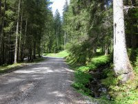 Schwarzentenn-Alm: Bild #16