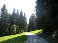 Schatzberg: Bild #11