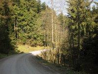 Blomberg: Bild #5