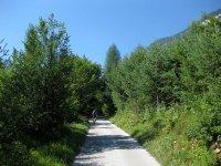 Eppan-Buchwald-Runde: Bild #15