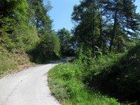 Eppan-Buchwald-Runde: Bild #16