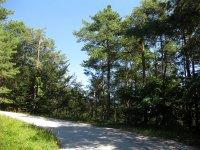 Eppan-Buchwald-Runde: Bild #17