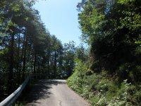 Eppan-Buchwald-Runde: Bild #20