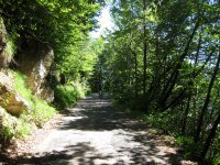 Eppan-Buchwald-Runde: Bild #27