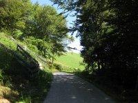 Eppan-Buchwald-Runde: Bild #29