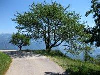 Eppan-Buchwald-Runde: Bild #32