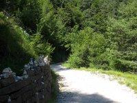 Eppan-Buchwald-Runde: Bild #39