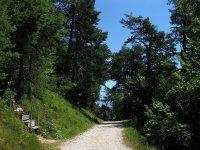 Eppan-Buchwald-Runde: Bild #40