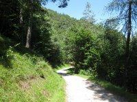 Eppan-Buchwald-Runde: Bild #41