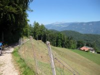 Eppan-Buchwald-Runde: Bild #43