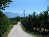 Eppan-Buchwald-Runde: Bild #46