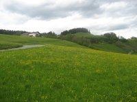 Spitzsteinhaus: Bild #6