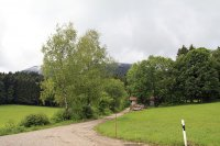 Blomberg: Bild #1