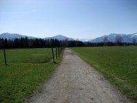 Loisach-Kochelsee-Moor: Bild #3