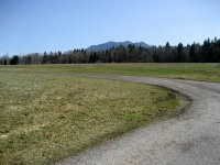 Loisach-Kochelsee-Moor: Bild #6