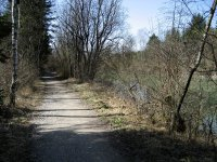 Loisach-Kochelsee-Moor: Bild #11
