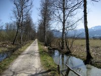 Loisach-Kochelsee-Moor: Bild #13