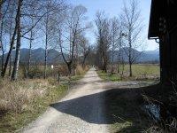 Loisach-Kochelsee-Moor: Bild #14