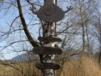 Loisach-Kochelsee-Moor: Bild #15