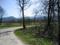Loisach-Kochelsee-Moor: Bild #16