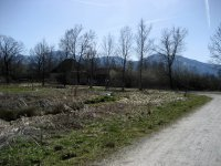 Loisach-Kochelsee-Moor: Bild #17