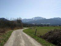 Loisach-Kochelsee-Moor: Bild #18