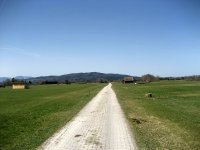 Loisach-Kochelsee-Moor: Bild #20