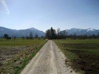 Loisach-Kochelsee-Moor: Bild #21