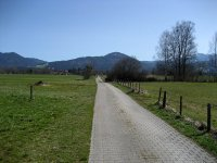 Loisach-Kochelsee-Moor: Bild #24