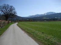 Loisach-Kochelsee-Moor: Bild #26